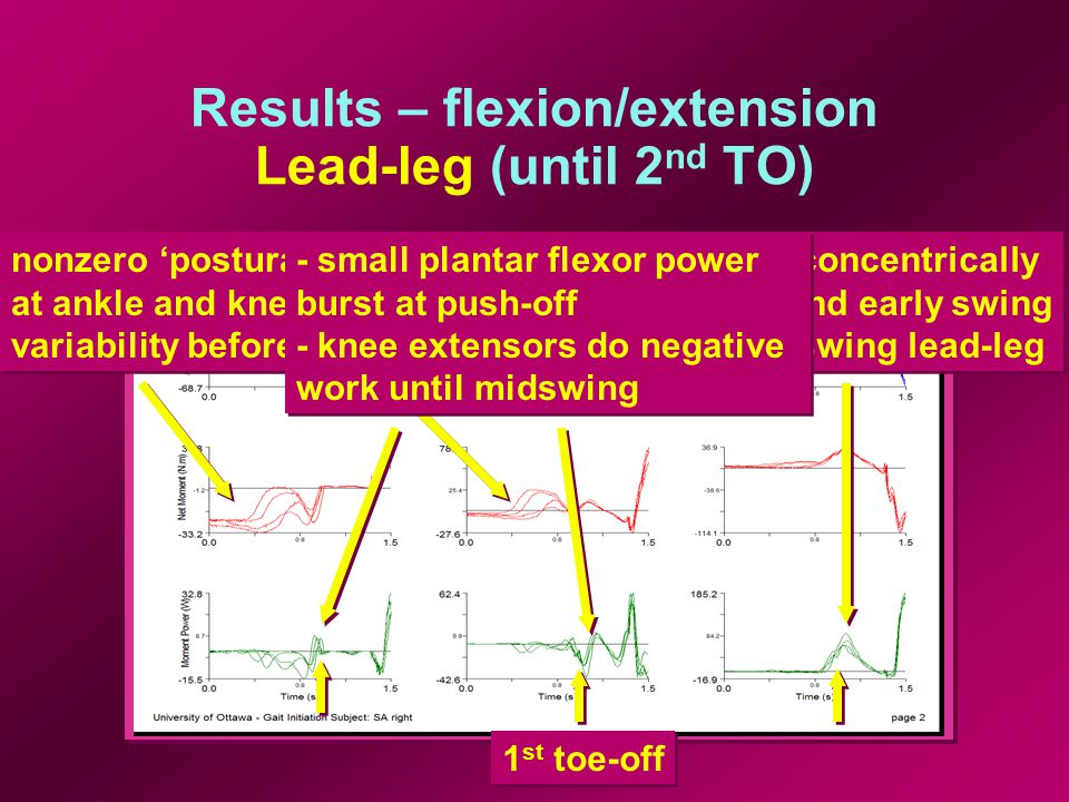 Results – flexion/extension Trail-leg (until 2 nd TO) 2 nd toe-off plantar flexors inactive until just before lead-leg FS when concentric work done for a push-off plantar flexors inactive until just before lead-leg FS when concentric work done for a push-off - knee extensors stiffen knee during midstance - knee flexors do positive work at push-off - knee extensors stiffen knee during midstance - knee flexors do positive work at push-off - hip flexors act eccentrically before toe-off - switch to concentric work to create swing of trail-leg - hip flexors act eccentrically before toe-off - switch to concentric work to create swing of trail-leg