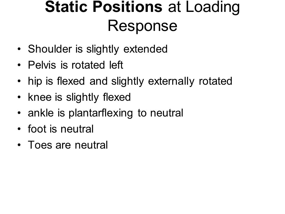 Static Positions at Loading Response Shoulder is slightly extended Pelvis is rotated left hip is flexed and slightly externally rotated knee is slightly flexed ankle is plantarflexing to neutral foot is neutral Toes are neutral