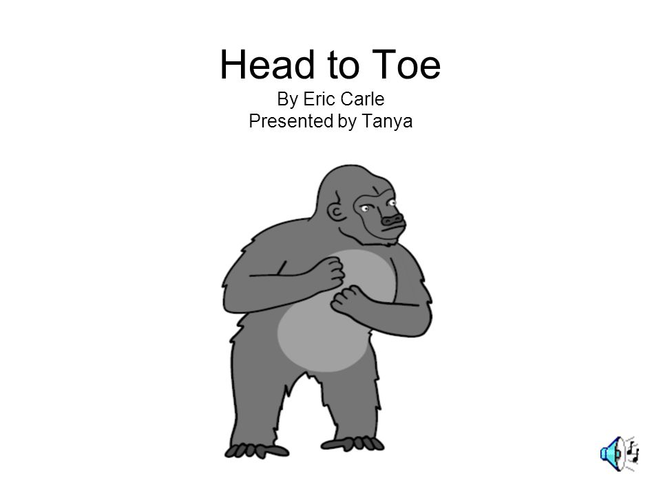 Head to Toe By Eric Carle Presented by Tanya