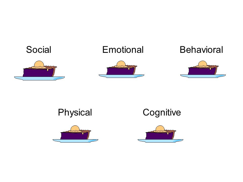 Social Emotional Behavioral Physical Cognitive