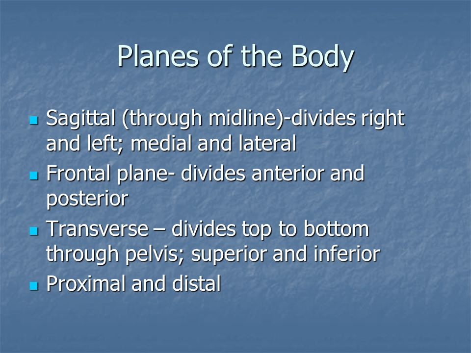 Planes of the Body Sagittal (through midline)-divides right and left; medial and lateral Sagittal (through midline)-divides right and left; medial and lateral Frontal plane- divides anterior and posterior Frontal plane- divides anterior and posterior Transverse – divides top to bottom through pelvis; superior and inferior Transverse – divides top to bottom through pelvis; superior and inferior Proximal and distal Proximal and distal