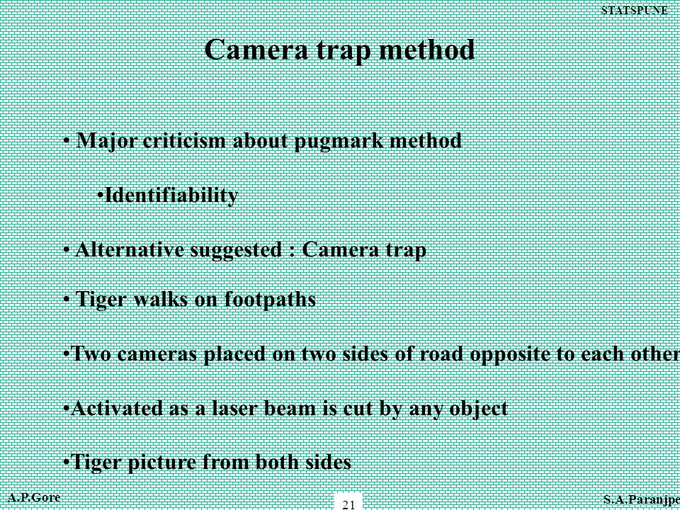 STATSPUNE 21 Camera trap method Major criticism about pugmark method Identifiability Alternative suggested : Camera trap Tiger walks on footpaths Two cameras placed on two sides of road opposite to each other Activated as a laser beam is cut by any object Tiger picture from both sides A.P.Gore S.A.Paranjpe