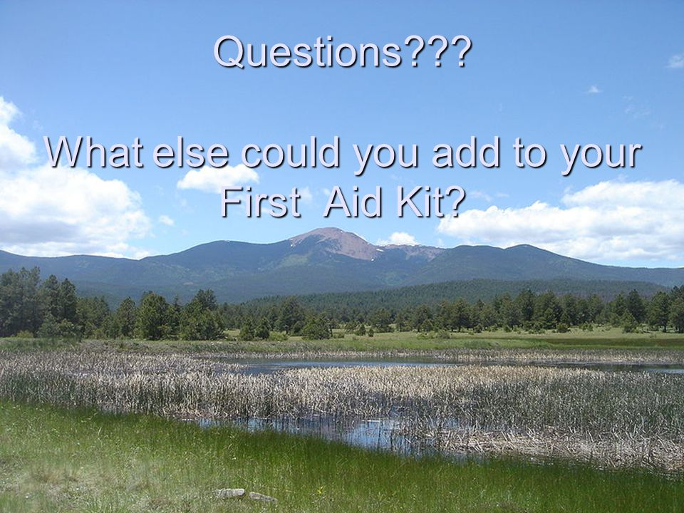 Questions??? What else could you add to your First Aid Kit?