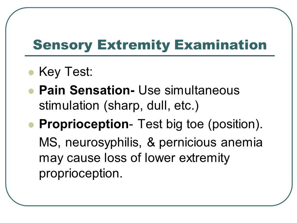 Sensory Extremity Examination Key Test: Pain Sensation- Use simultaneous stimulation (sharp, dull, etc.) Proprioception- Test big toe (position).