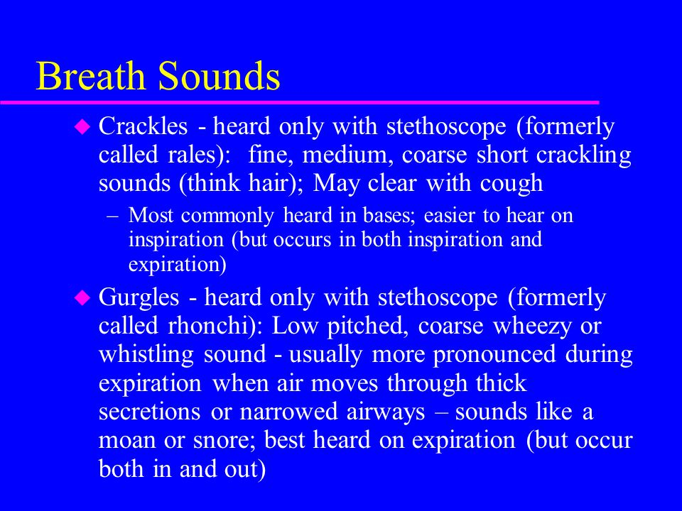 Breath Sounds u Crackles - heard only with stethoscope (formerly called rales): fine, medium, coarse short crackling sounds (think hair); May clear with cough –Most commonly heard in bases; easier to hear on inspiration (but occurs in both inspiration and expiration) u Gurgles - heard only with stethoscope (formerly called rhonchi): Low pitched, coarse wheezy or whistling sound - usually more pronounced during expiration when air moves through thick secretions or narrowed airways – sounds like a moan or snore; best heard on expiration (but occur both in and out)