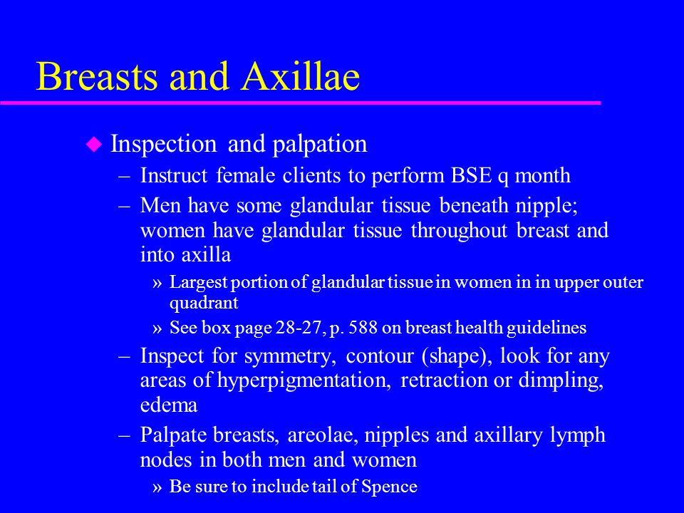 Breasts and Axillae u Inspection and palpation –Instruct female clients to perform BSE q month –Men have some glandular tissue beneath nipple; women have glandular tissue throughout breast and into axilla »Largest portion of glandular tissue in women in in upper outer quadrant »See box page 28-27, p.