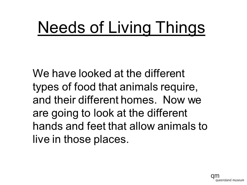 Needs of Living Things We have looked at the different types of food that animals require, and their different homes.