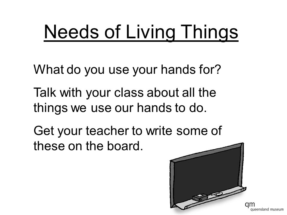 Needs of Living Things What do you use your hands for? Talk with your class about all the things we use our hands to do. Get your teacher to write som