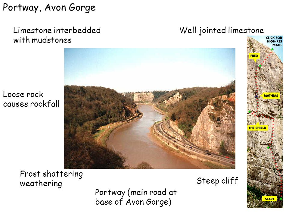 Limestone interbedded with mudstones Portway, Avon Gorge Well jointed limestone Loose rock causes rockfall Frost shattering weathering Steep cliff Por