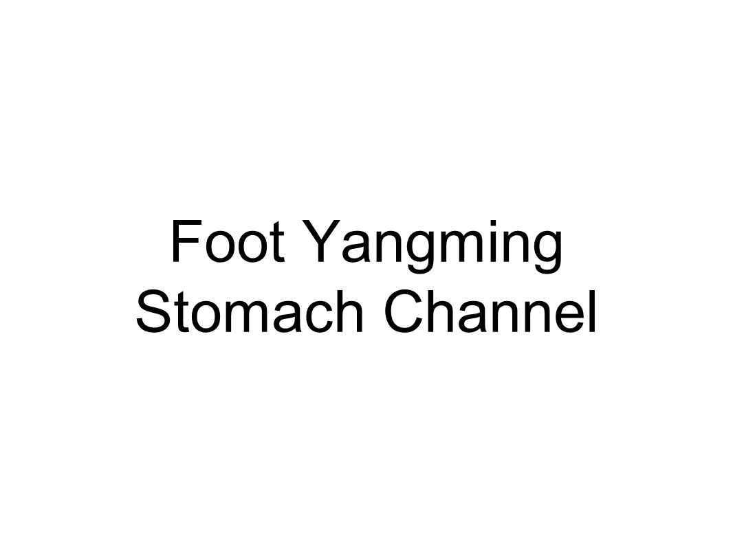 Foot Yangming Stomach Channel