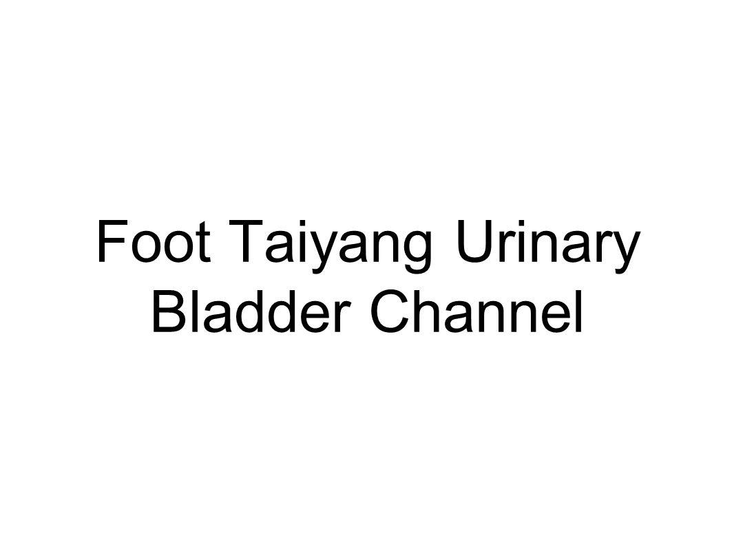 Foot Taiyang Urinary Bladder Channel