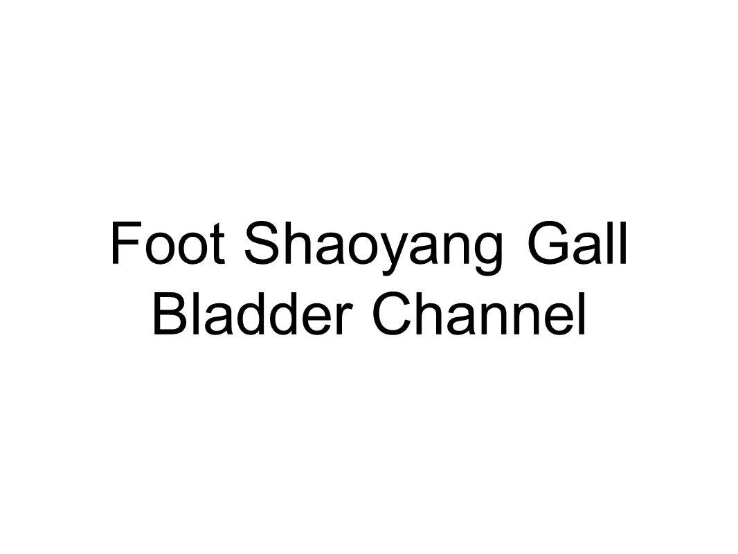 Foot Shaoyang Gall Bladder Channel