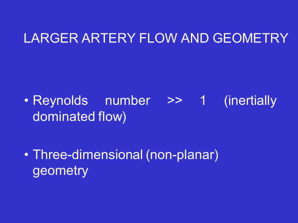 LARGER ARTERY FLOW AND GEOMETRY Reynolds number >> 1 (inertially dominated flow) Three-dimensional (non-planar) geometry