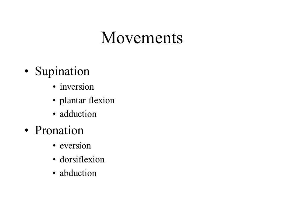 Movements Supination inversion plantar flexion adduction Pronation eversion dorsiflexion abduction