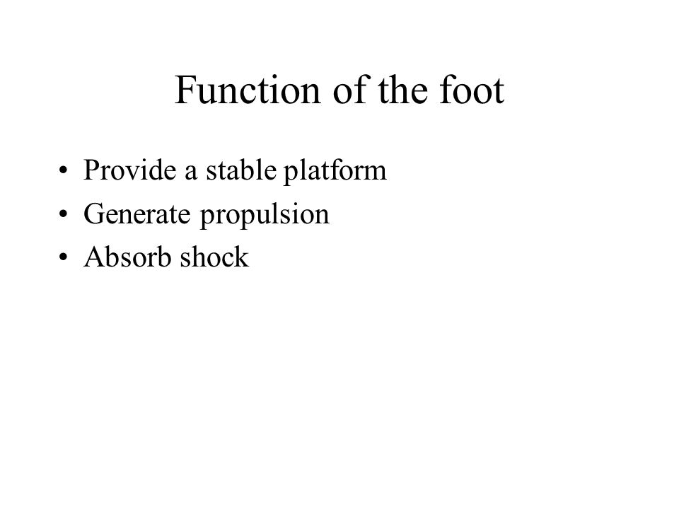 Function of the foot Provide a stable platform Generate propulsion Absorb shock