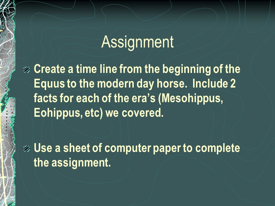 Assignment Create a time line from the beginning of the Equus to the modern day horse. Include 2 facts for each of the era's (Mesohippus, Eohippus, et