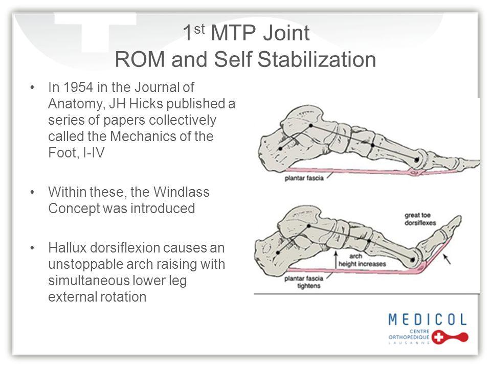 Clinical Examination FHL Stretch Test 1.Ankle in plantar flexion.