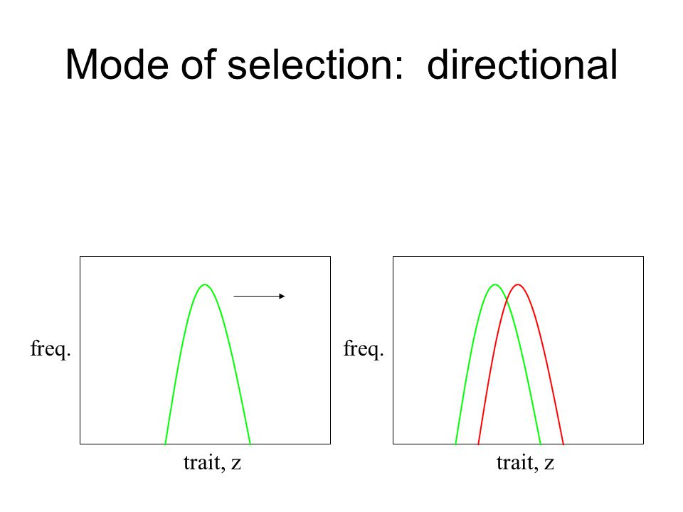 Mode of selection: directional trait, z freq. trait, z freq.