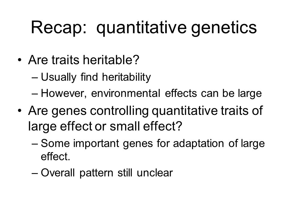Recap: quantitative genetics Are traits heritable? –Usually find heritability –However, environmental effects can be large Are genes controlling quant