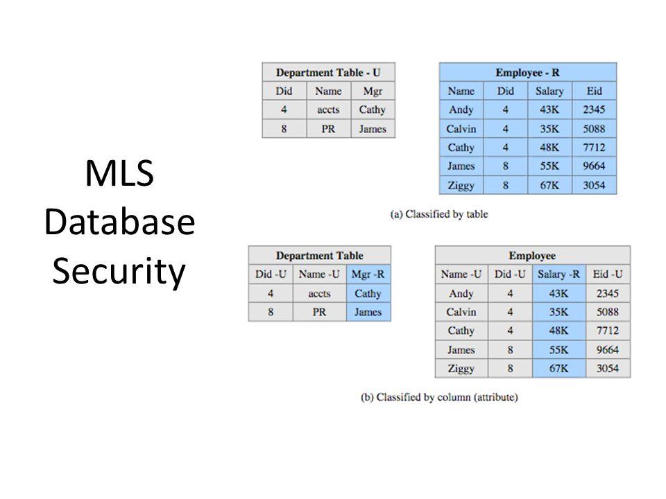 MLS Database Security
