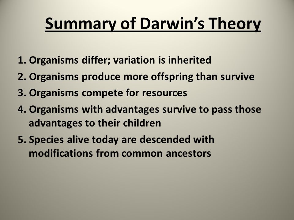 Summary of Darwin's Theory 1. Organisms differ; variation is inherited 2. Organisms produce more offspring than survive 3. Organisms compete for resou
