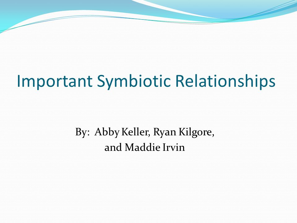 Important Symbiotic Relationships By: Abby Keller, Ryan Kilgore, and Maddie Irvin