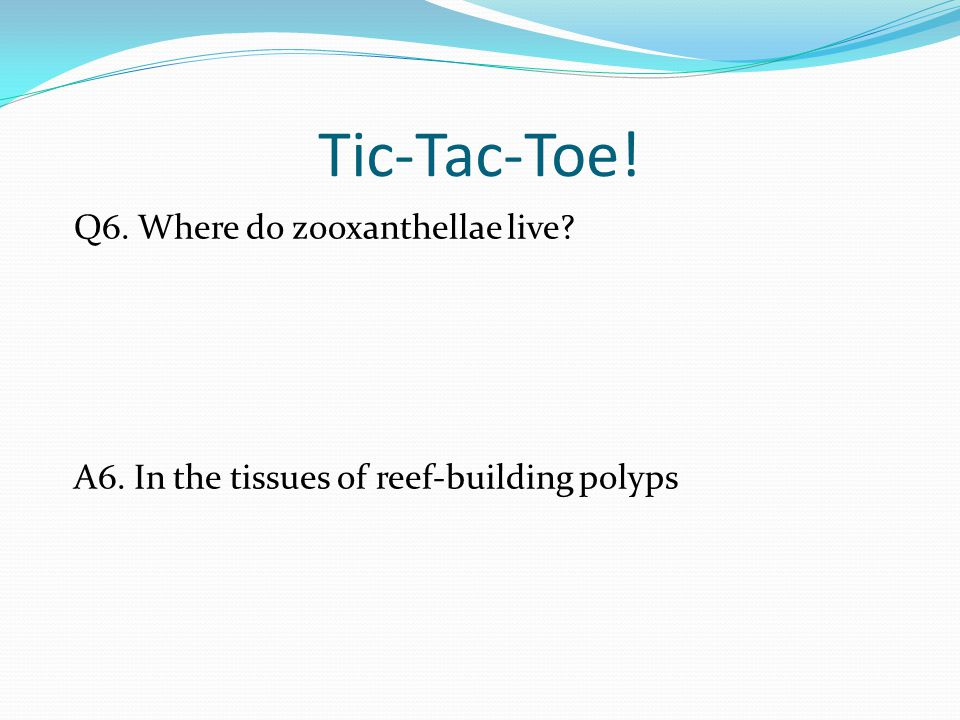 Tic-Tac-Toe! Q6. Where do zooxanthellae live A6. In the tissues of reef-building polyps