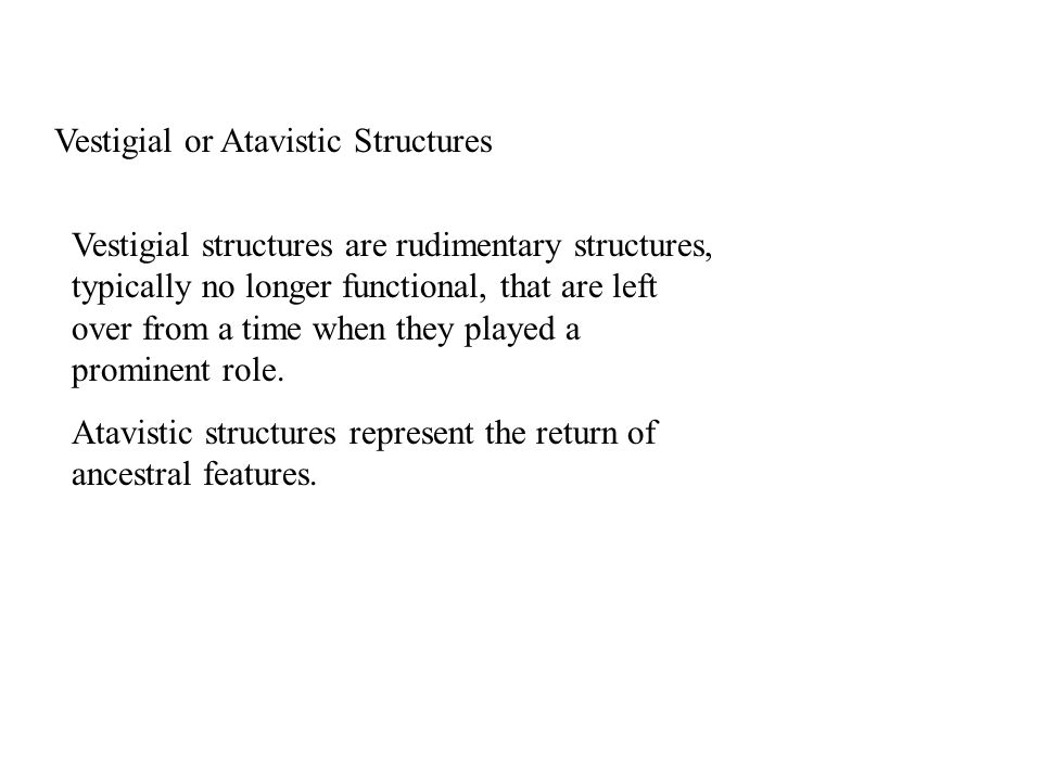 Vestigial or Atavistic Structures Vestigial structures are rudimentary structures, typically no longer functional, that are left over from a time when they played a prominent role.