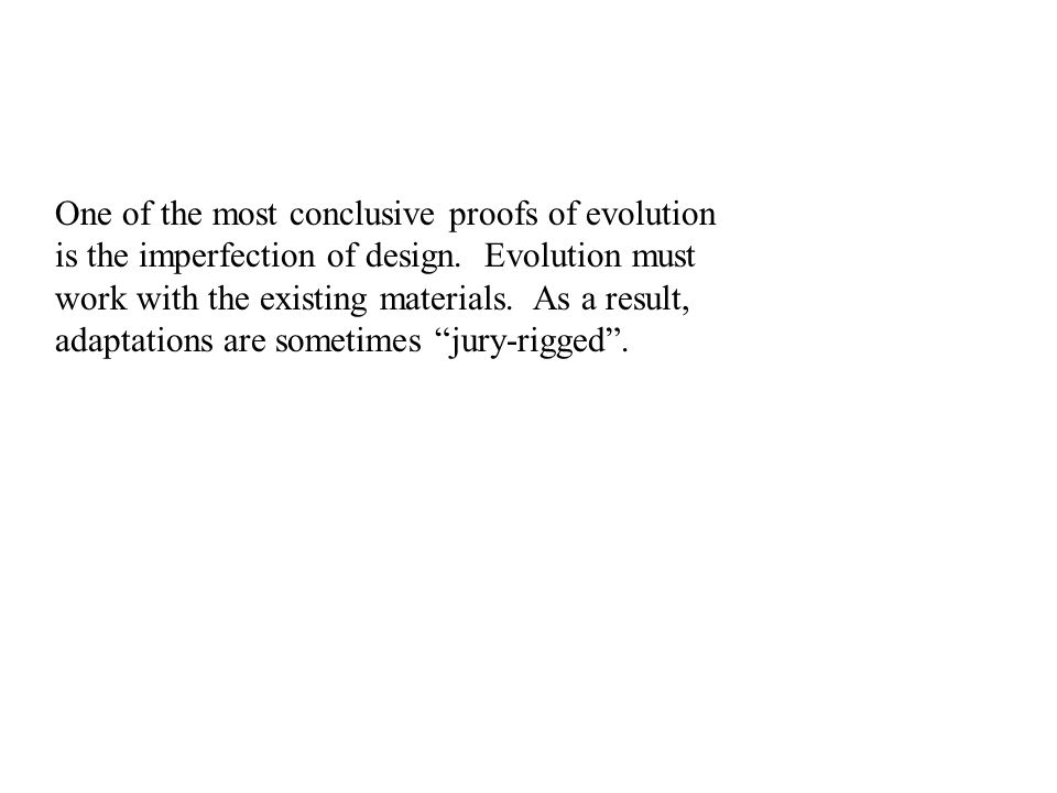 One of the most conclusive proofs of evolution is the imperfection of design.