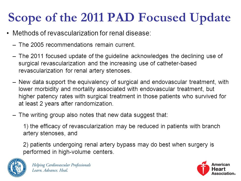 Methods of revascularization for renal disease: –The 2005 recommendations remain current.