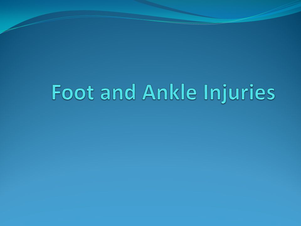 FYI The foot and ankle support the weight and transfer force as a person walks and runs.
