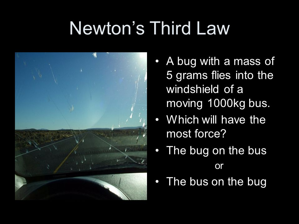 Newton's Third Law A bug with a mass of 5 grams flies into the windshield of a moving 1000kg bus. Which will have the most force? The bug on the bus o