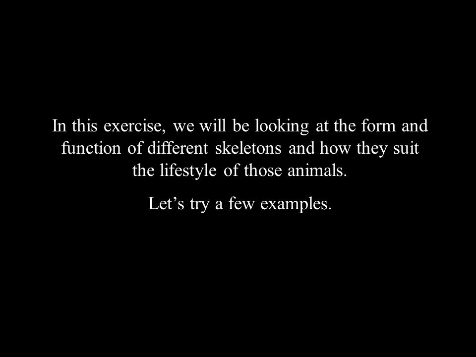 Exercise directions In this exercise, we will be looking at the form and function of different skeletons and how they suit the lifestyle of those animals.