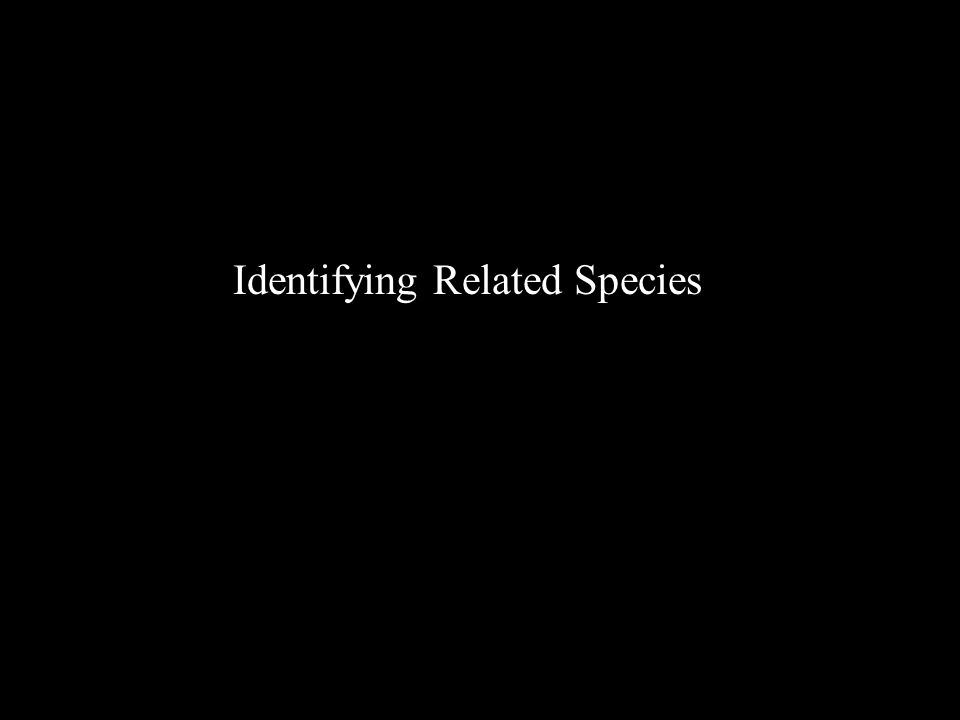 Identifying Related Species