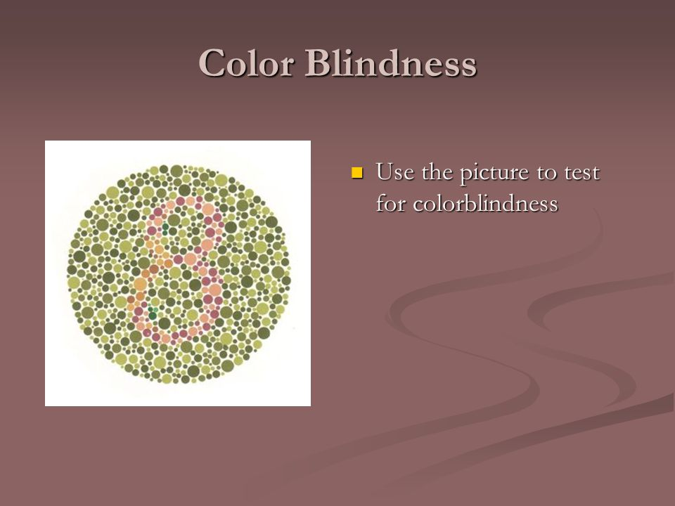 Color Blindness Use the picture to test for colorblindness