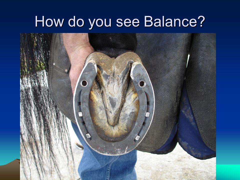 How do you see Balance?