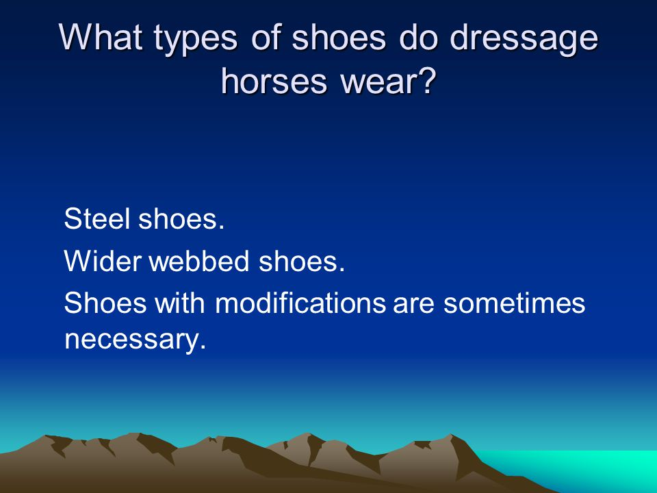 What types of shoes do dressage horses wear.Steel shoes.