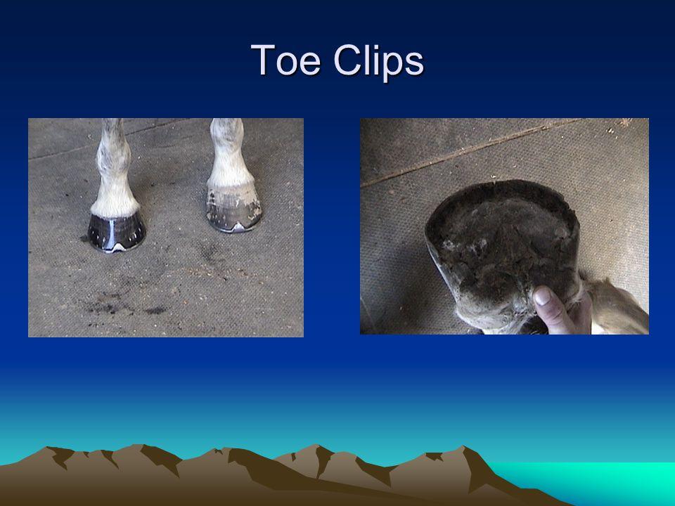 Toe Clips