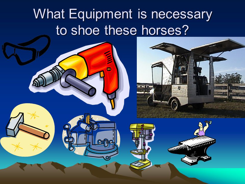 What Equipment is necessary to shoe these horses?