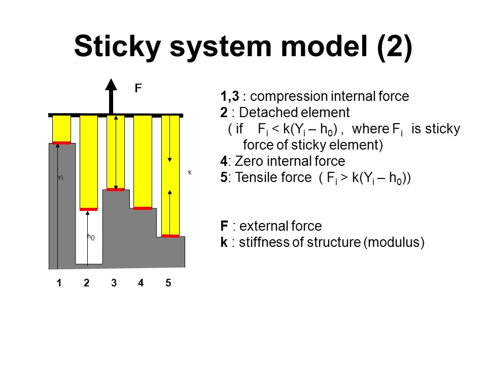 Sticky system model (2) 1,3 : compression internal force 2 : Detached element ( if F i < k(Y i – h 0 ), where F i is sticky force of sticky element) 4: Zero internal force 5: Tensile force ( F i > k(Y i – h 0 )) F : external force k : stiffness of structure (modulus) 1 2 3 4 5 F h0h0 YiYi k
