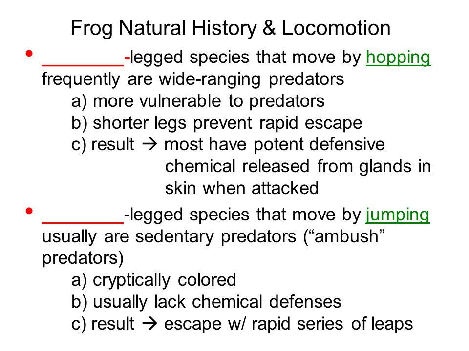 Frog Natural History & Locomotion ________-legged species that move by hopping frequently are wide-ranging predators a) more vulnerable to predators b) shorter legs prevent rapid escape c) result  most have potent defensive chemical released from glands in skin when attacked ________-legged species that move by jumping usually are sedentary predators ( ambush predators) a) cryptically colored b) usually lack chemical defenses c) result  escape w/ rapid series of leaps