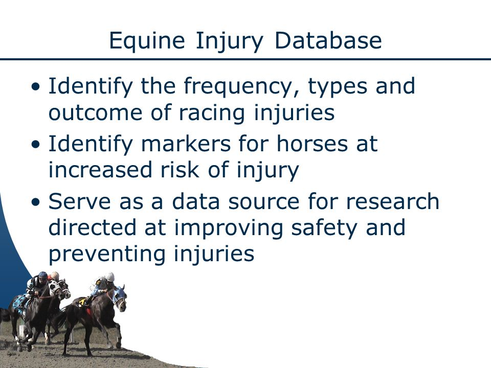 Equine Injury Database Identify the frequency, types and outcome of racing injuries Identify markers for horses at increased risk of injury Serve as a data source for research directed at improving safety and preventing injuries