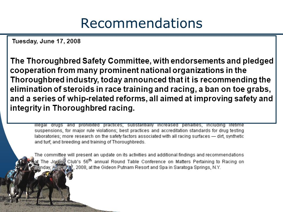 Recommendations Tuesday, June 17, 2008 The Thoroughbred Safety Committee, with endorsements and pledged cooperation from many prominent national organizations in the Thoroughbred industry, today announced that it is recommending the elimination of steroids in race training and racing, a ban on toe grabs, and a series of whip-related reforms, all aimed at improving safety and integrity in Thoroughbred racing.