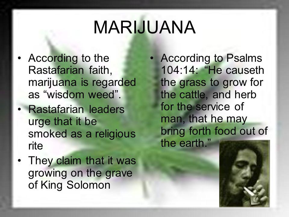 MARIJUANA According to the Rastafarian faith, marijuana is regarded as wisdom weed .