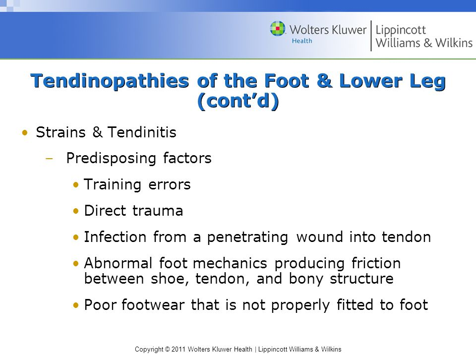 Copyright © 2011 Wolters Kluwer Health   Lippincott Williams & Wilkins Tendinopathies of the Foot & Lower Leg (cont'd) Strains & Tendinitis –Predisposing factors Training errors Direct trauma Infection from a penetrating wound into tendon Abnormal foot mechanics producing friction between shoe, tendon, and bony structure Poor footwear that is not properly fitted to foot