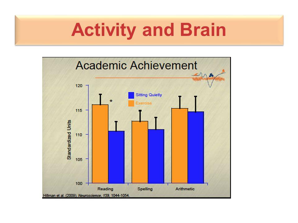 Activity and Brain