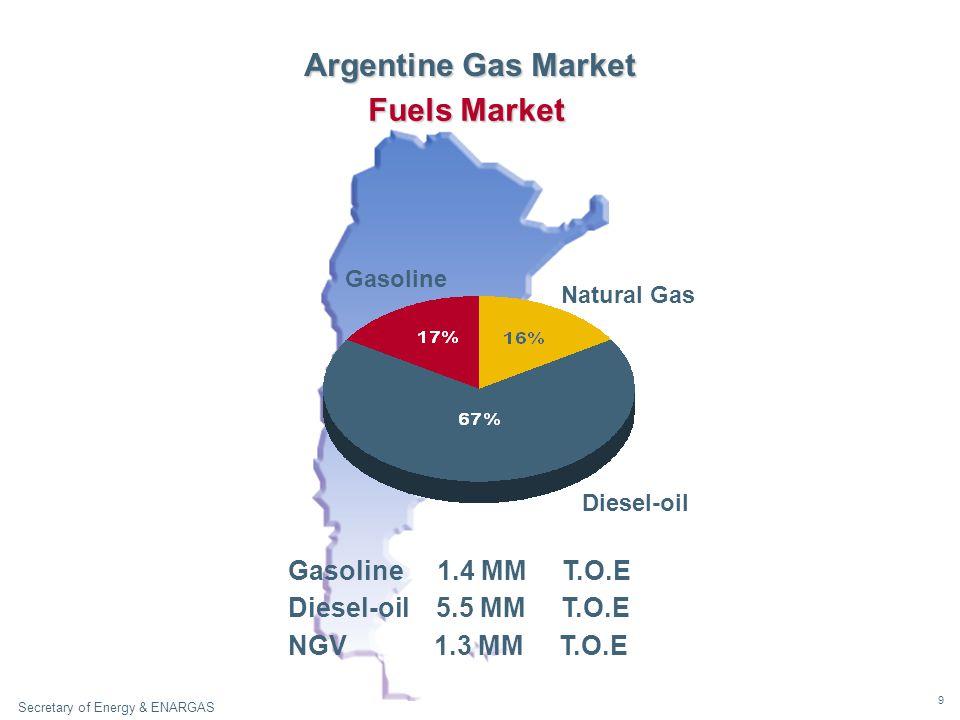 9 Secretary of Energy & ENARGAS Natural Gas Gasoline Diesel - oil Fuels Market Gasoline 1.4 MM T.O.E Diesel-oil 5.5 MM T.O.E NGV 1.3 MM T.O.E Argentine Gas Market Diesel-oil