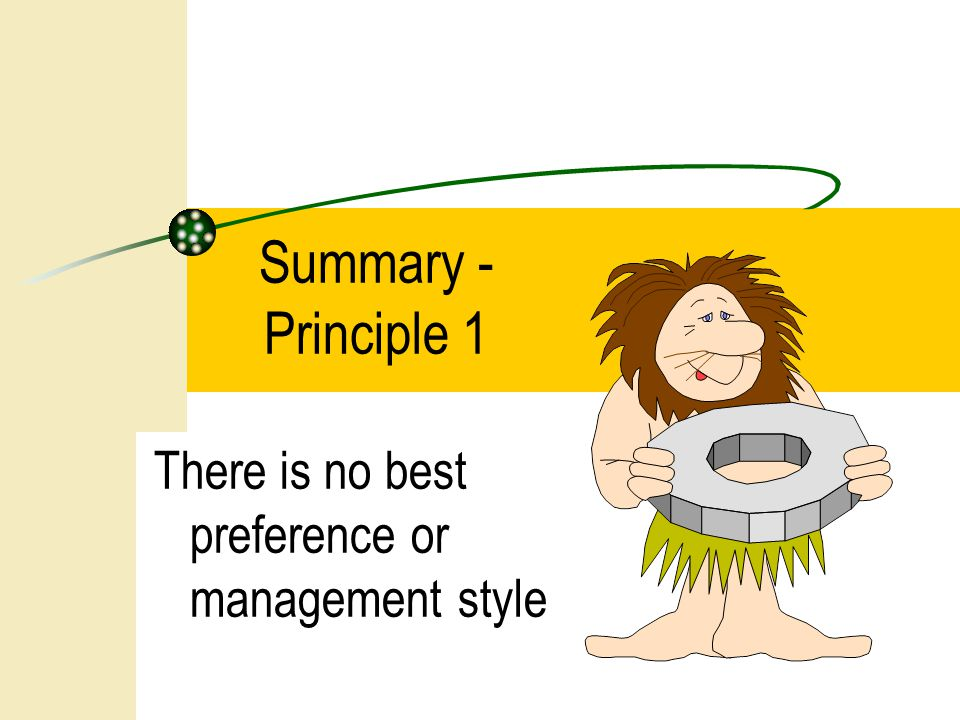 Summary - Principle 1 There is no best preference or management style
