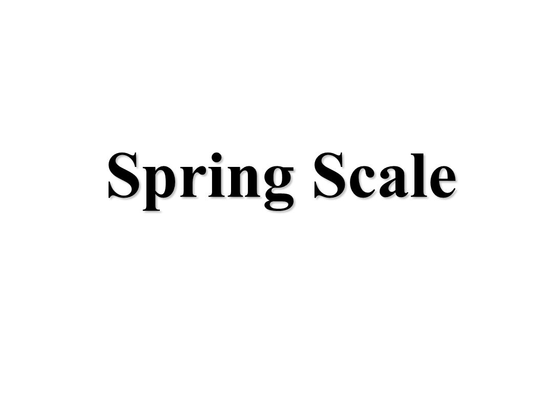 Spring Scale