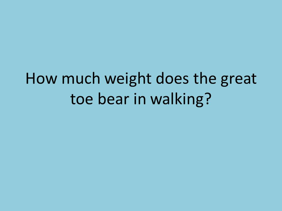 How much weight does the great toe bear in walking